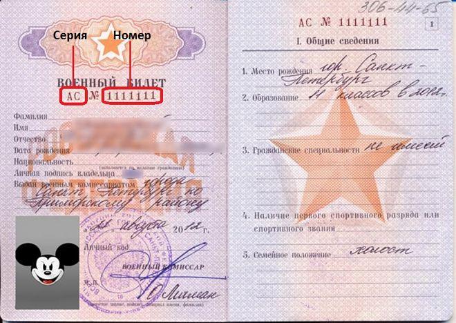 Серия и номер в военном билете